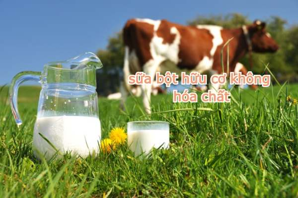 sữa Aptamil Organic