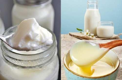 Cách làm sữa chua cho bé tại nhà thơm ngon