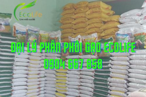 Sản phẩm gạo sạch tại đai lý gạo EcoLife rất đa dang và phong phú