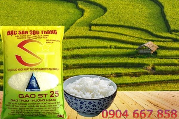 Mua gạo ST25 chính hãng chỉ với 33.000 đồng/ kg