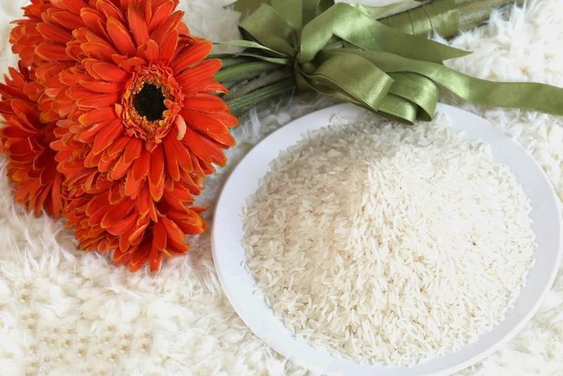 Gạo Lài Sữa nằm trong top những loại gạo ngon nhất Việt Nam hiện nay