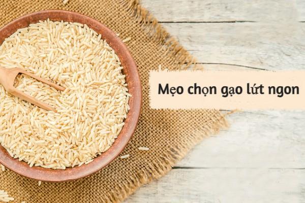 Mẹo lựa chọn gạo lứt ngon