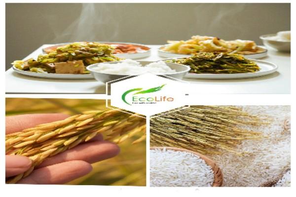 Hệ thống cửa hàng gạo sạch EcoLife có mặt nhiều nơi tại TP HCM và Hà Nội
