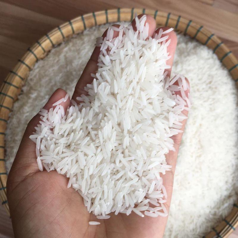 Những hạt gạo ST25 các đại lý gạo ST25 Hà Nội
