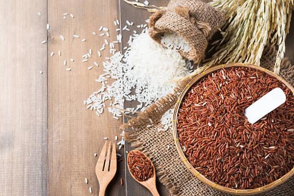 EcoLife - Đại lý gạo uy tín hàng đầu cho khách hàng