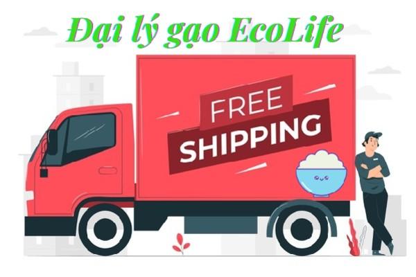 Đặt hàng online, giao ngay tận nhà trong 2h tại địa lý gạo quận 2