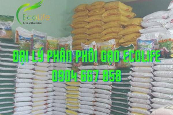 Sản phẩm gạo sạch tại đại lý gạo EcoLife rất đa dang và phong phú