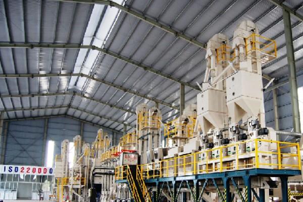 Quy trình sản xuất gạo Việt Nam ngon nhất thế giới đạt chuẩn quốc tế