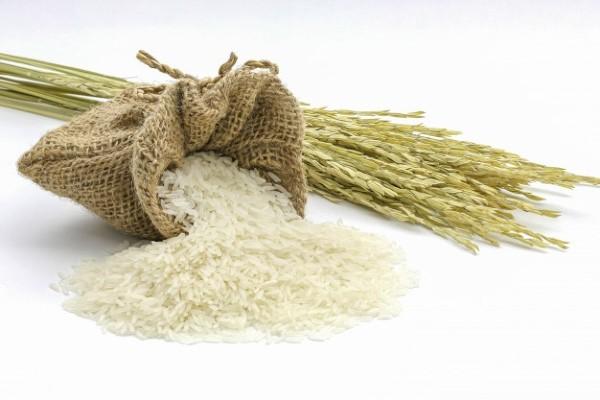 EcoLife - đại lý gạo uy tín nhất tại Việt Nam