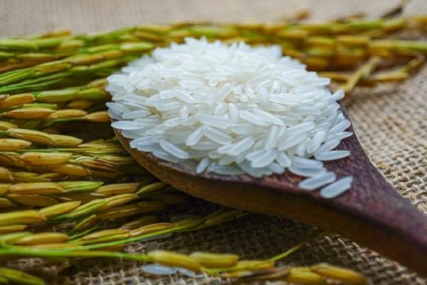 Hiện nay, gạo ST25 giá dao động vào khoảng 32.000 đồng - 45.000 đồng/kg tùy cửa hàng, đại lý